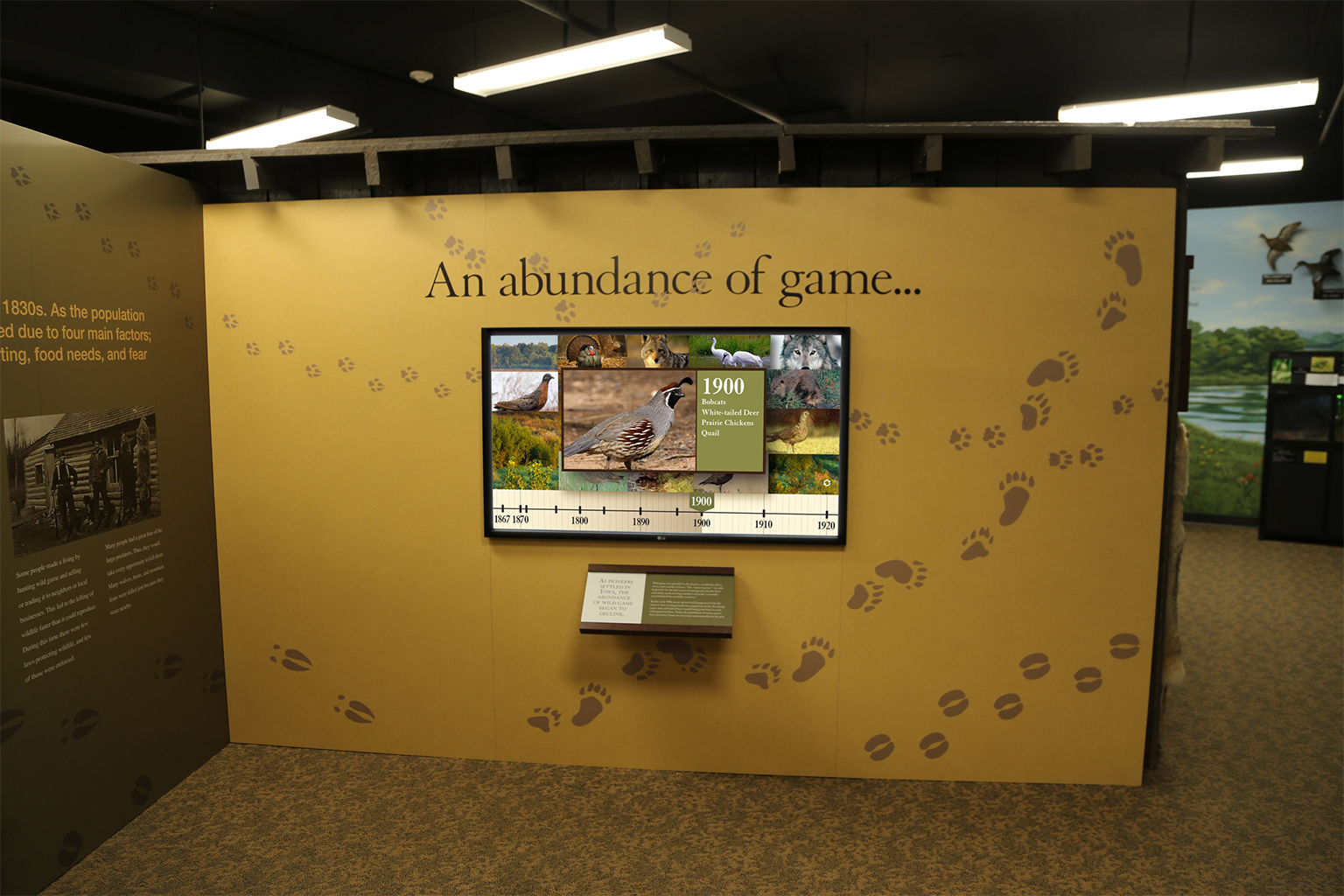 """Muscatine County Conservation Museum """"An abundance of game"""" Gisplay"""