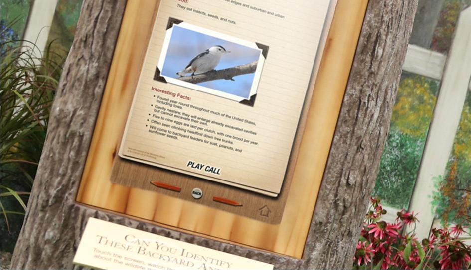 Backyard Species interactive at Washington County Conservation
