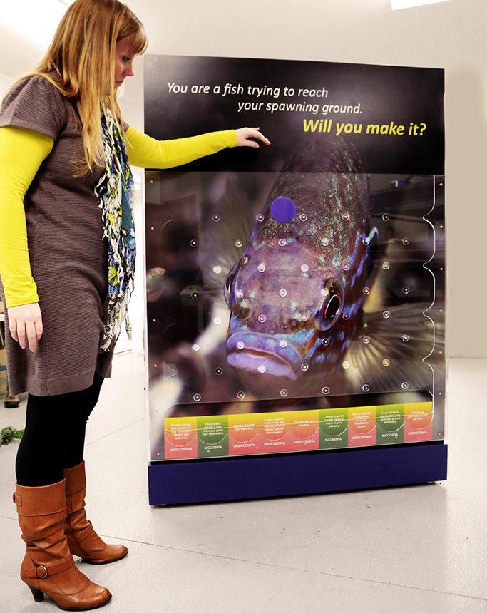 National Mississippi River Museum and Aquarium Plinko Interactive
